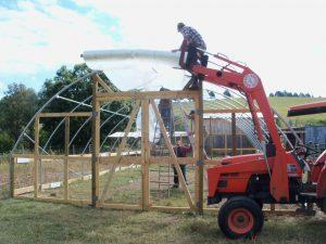 greenhouse-011